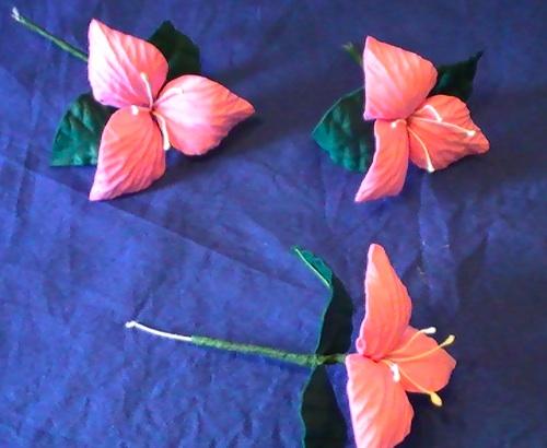 goma eva flores