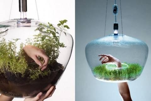 12-maneras-hermosas-de-tener-plantas-de-interior-lampara