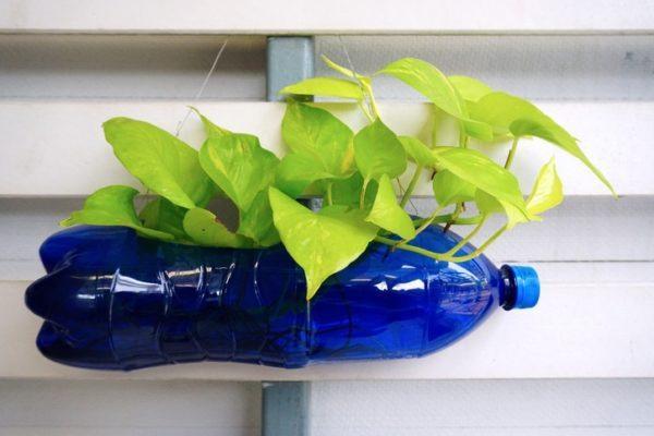 Manualidades con materiales reciclados para adultos maceta botella plastico