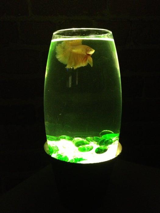 Manualidades con luces LED acuario