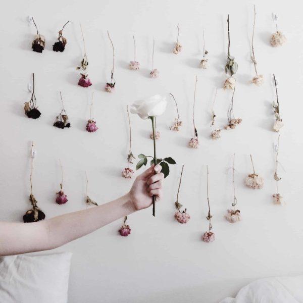 Ideas manualidades con rosas secas pared