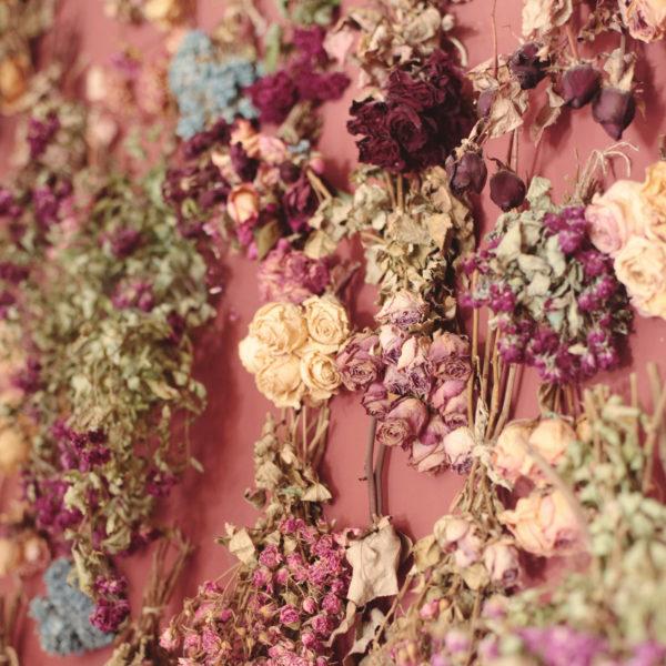 Ideas manualidaes rosas secas pared