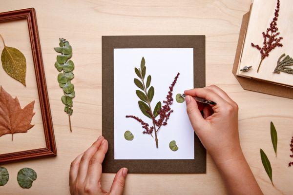 Manualidades para niños dia del arbol cuadro con hojas