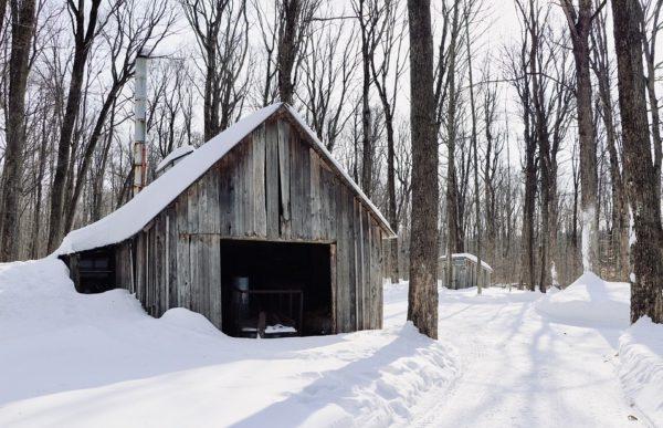 Fachada de casa rustica