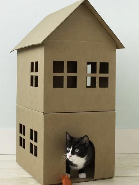 Mejores manualidades dia internacional gato caja carton