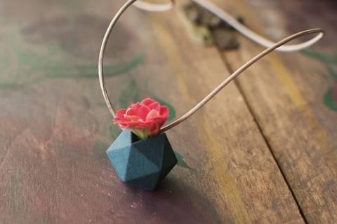 12-maneras-hermosas-de-tener-plantas-de-interior-collar