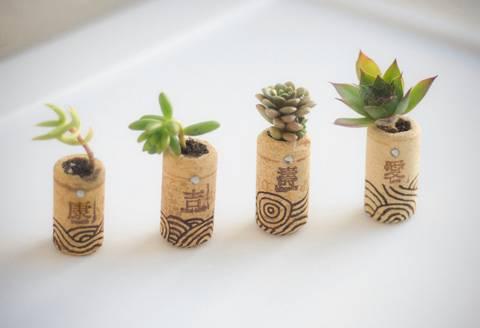 12-maneras-hermosas-de-tener-plantas-de-interior-tapones-de-corcho