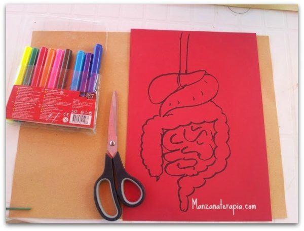 Manualidades Del Sistema Digestivo Para Niños Manualidadeses