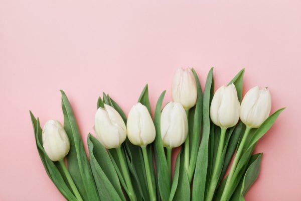 Hacer tulipanes de papel grandes