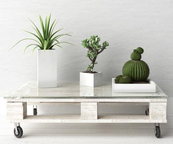 Manualidades con materiales reciclados para adultos palets mesa