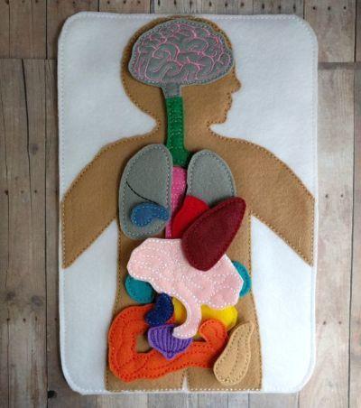 ideas-de-manualidades-del-sistema-digestivo-para-ninos-fieltro-pinterest